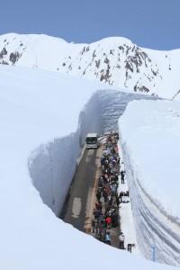 【雪の大谷】シーズンの始まる4月~約20メートルの大壁がそびえる道を歩くのが人気。